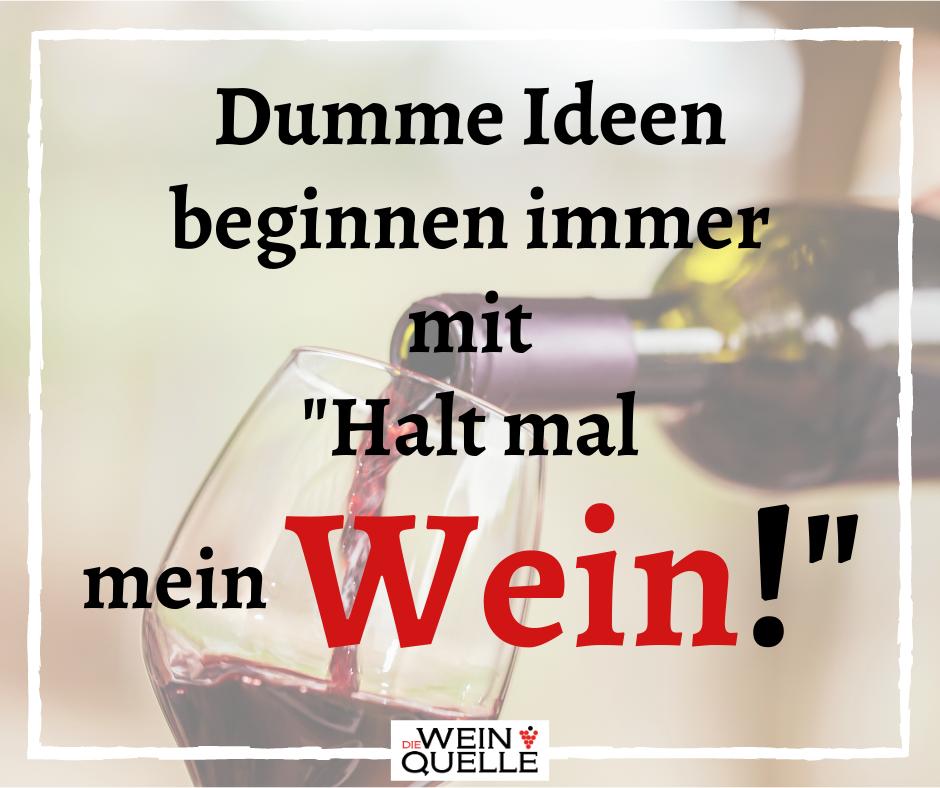 Dumme Ideen beginnen immer mit _Halt mal mein Wein!